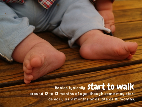 Babies typically around 12 to 13 months of age, though some may start as early as 9 months or as late as 16 months.