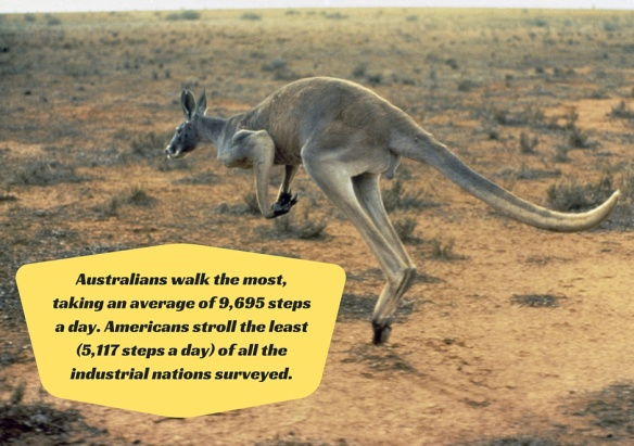 Australians walk the most, taking an average of 9,695 steps a day. Americans stroll the least (5,117 steps a day) of all the industrial nations surveyed.