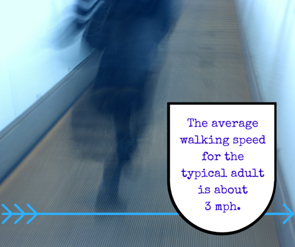 the-average-walking-speed-for-the-typical-adult-is-about-3-mph